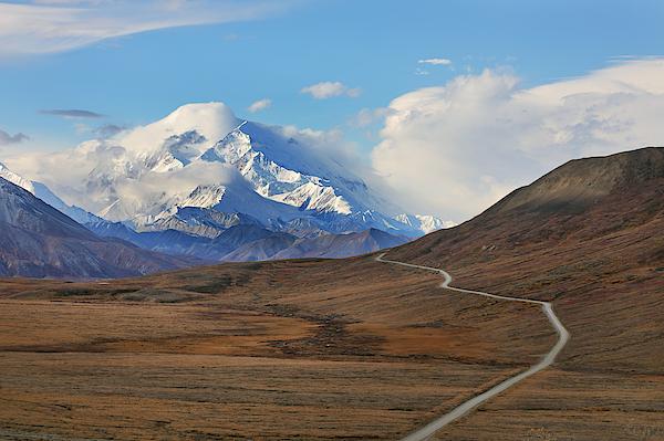 Park Road In Autumn Landscape Leading Toward Mount Denali Photograph by Rainer Grosskopf