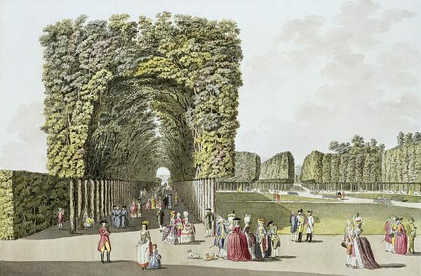 Austrian Gardens Painting - Part Of The Garden At Ausgarten by Johann Ziegler