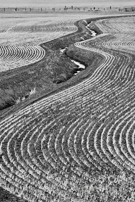 Landscape Photograph - Patterns 1 by Don Hall