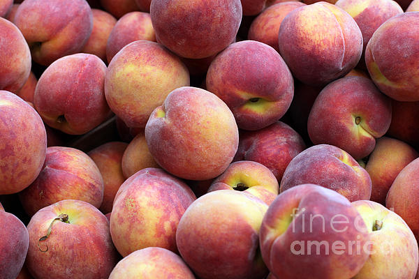 Peaches Photograph - Peachy by Denise Pohl