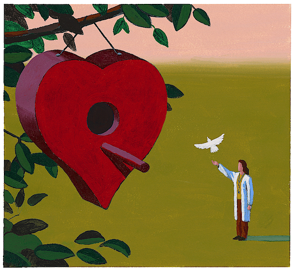 Physician Releasing Dove Drawing by Jonathan Evans