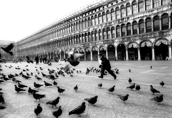 Piazza San Marco Venice Italy 1998 Photograph by Heidi Wild
