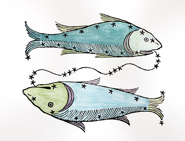 Astronomy Painting - Pisces An Illustration by Italian School