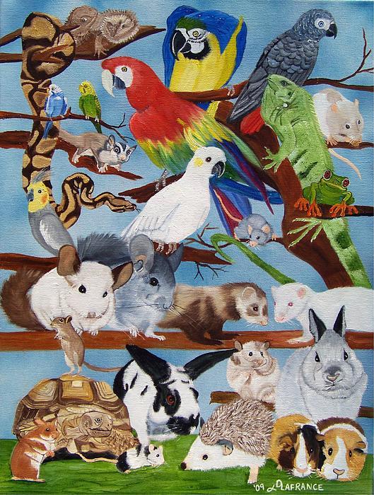 Bird Painting - Pocket Pets by Debbie LaFrance