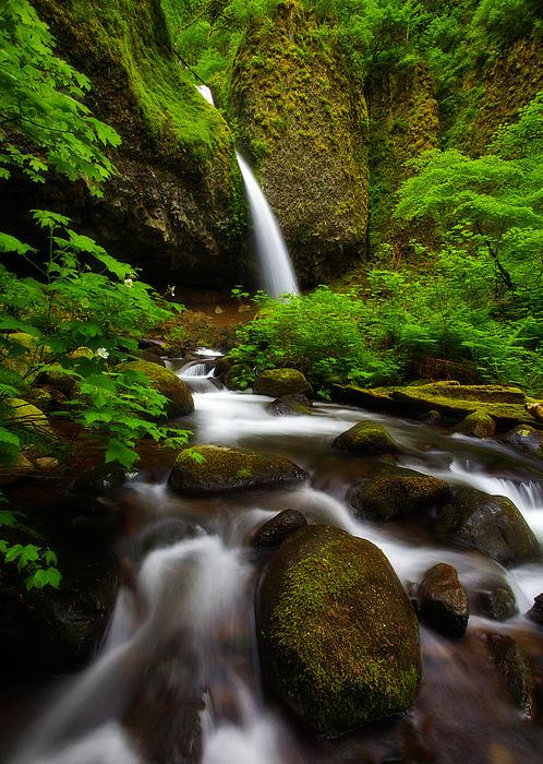 Waterfalls Photograph - Ponytail Dreams by Darren  White