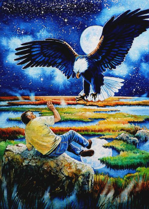 Eagle Painting - Pooka Hill 3 by Hanne Lore Koehler