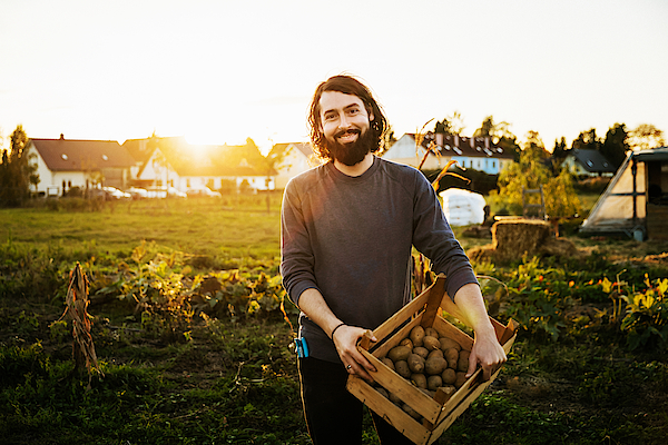 Portrait Of Urban Farmer Holding Crate Of Potatoes Photograph by Tom Werner