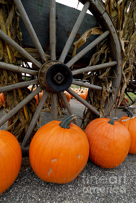 Autumn Photograph - Pumpkins With Old Wagon by Amy Cicconi
