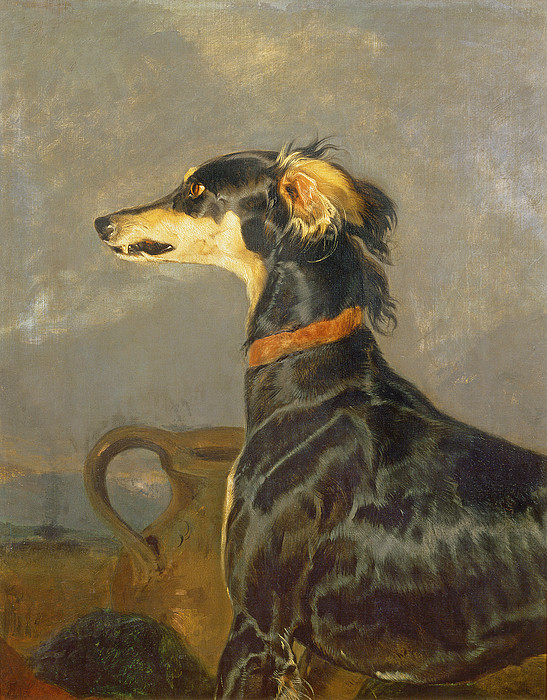 Pet Painting - Queen Victorias Favourite Dog, Eos by Sir Edwin Landseer