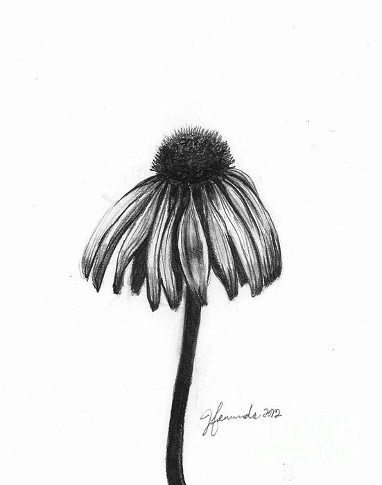 Flower Drawing - Quiet Comfort by J Ferwerda