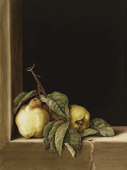 Still Life Painting - Quinces by Jenny Barron