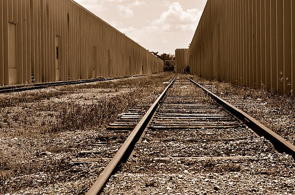 Railroad Photograph - Railroad by Andres LaBrada