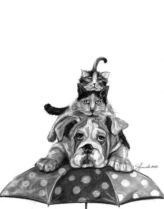 Umbrella Drawing - Raining Cats And A Dog by J Ferwerda
