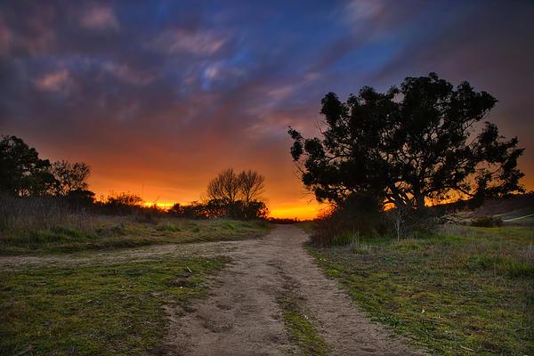 Sun Photograph - Rancho Santa Fe Sunset by Larry Marshall