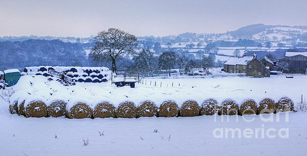 Farm Photograph - Ready For Winter by David Birchall