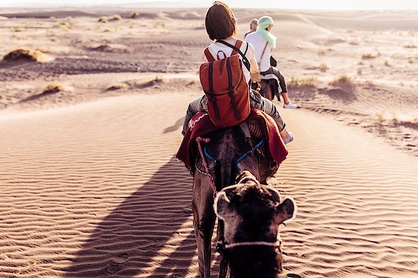 Rear View Of People Riding Camels In Desert Photograph by Oscar Wong