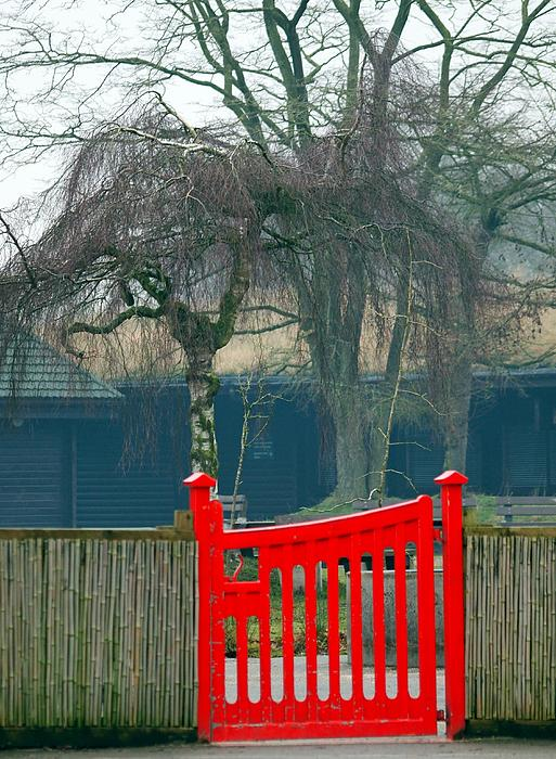 Red Photograph - Red Gate by Susan Tinsley