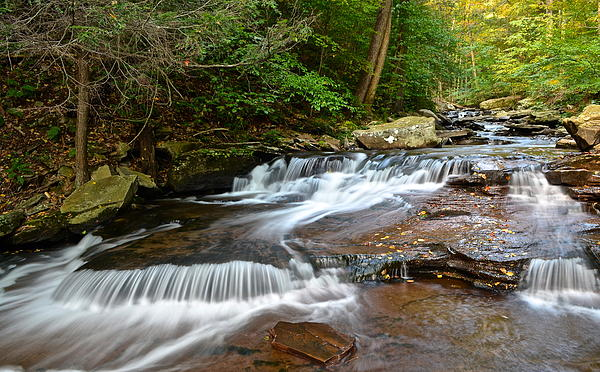 Ricketts Photograph - Ricketts Glen by Frozen in Time Fine Art Photography
