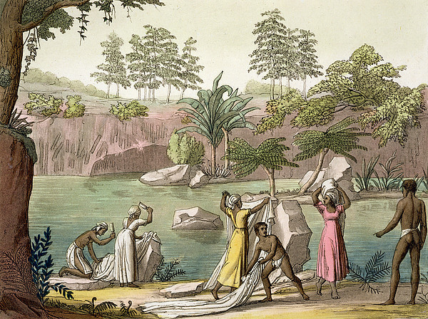 Giulio Drawing - River Near San Benedetto, Madagascar by Gallo Gallina