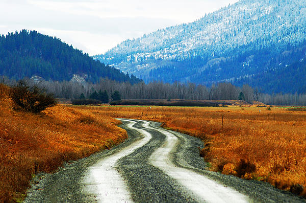 Landscape Photograph - Road Of Dreams by Annie Pflueger