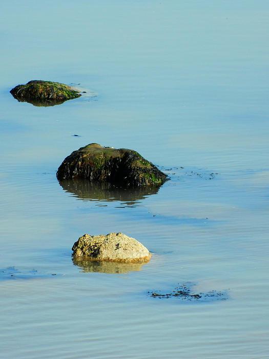 Rocks In The Sea Photograph - Rock Pool by Sharon Lisa Clarke
