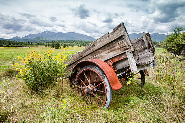 Rustic Scenes Photograph - Rustic Landscapes - Wagon And Wildflowers by Gary Heller