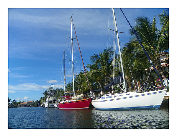 Sailboats Channel Water Blue Sky Sunny Hot Florida  Photograph - Sailboats  by Dianne  Lacourciere