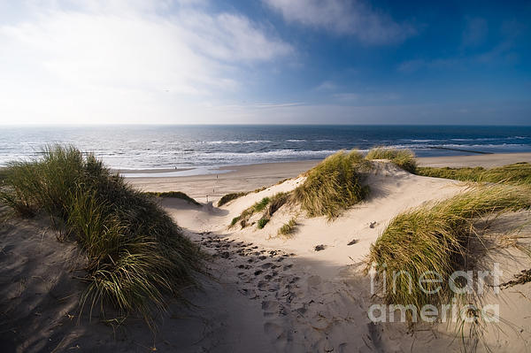 Sand Dune Photograph - Sand Dune by Boon Mee