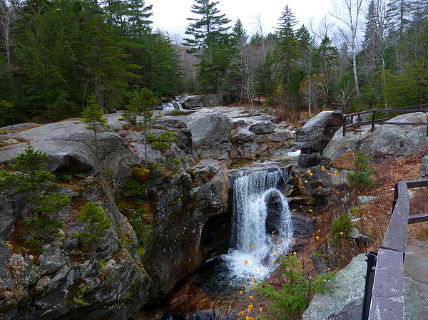 Waterfall Photograph - Screw Auger Falls by Greg Jeffery