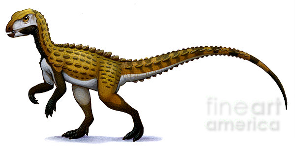 Cutout Digital Art - Scutellosaurus, An Early Jurassic by H. Kyoht Luterman