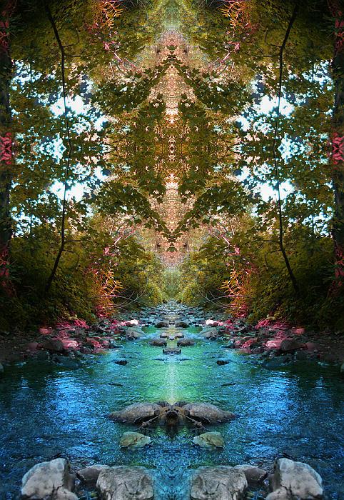 Water Photograph - Secrets Of Nature by Tina Vrankar