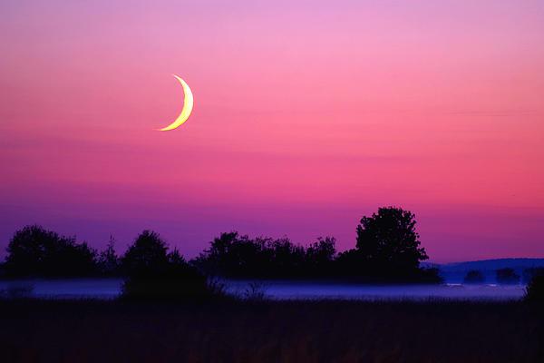 Moon Photograph - Setting Crescent Moon At Dusk by Douglas Taylor