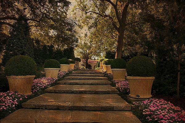 Shade Garden Photograph - Shady Garden Walk by Cindy Rubin