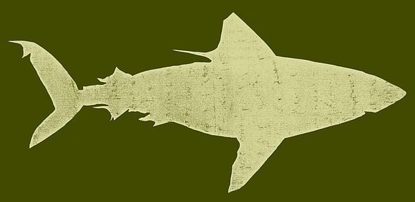 Shark Drawing - Shark by Michelle Calkins