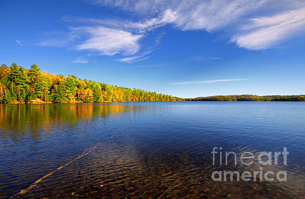 Autumn Photograph - Silent Lake 4 by Charline Xia