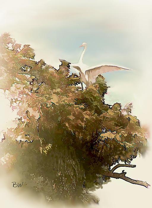 Crane Photograph - Sitting Pretty by Bonnie Willis