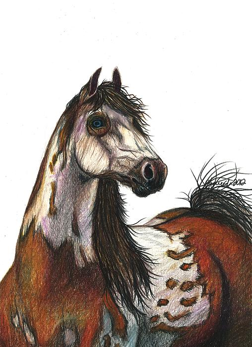 Horse Drawing - Sky Earth And Fire by J Ferwerda