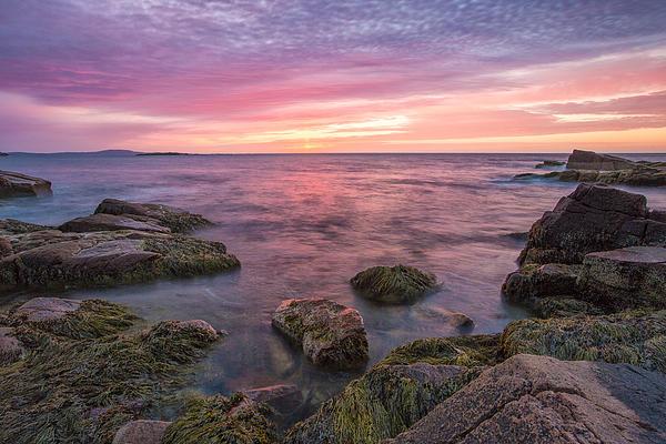 Horizontal Photograph - Sky Purple by Jon Glaser