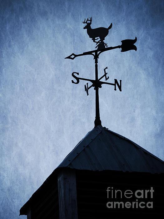 Deer Photograph - Skyfall Deer Weathervane  by Edward Fielding