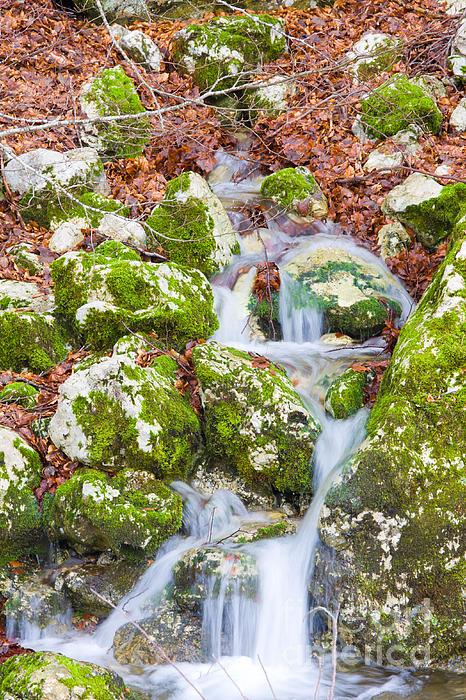 Waterfall Photograph - Small Waterfall by Gabriela Insuratelu