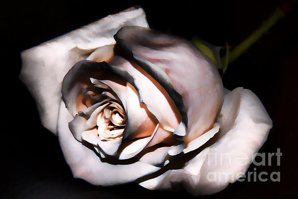 Smoked Photograph - Smoked Rose by Mariola Bitner