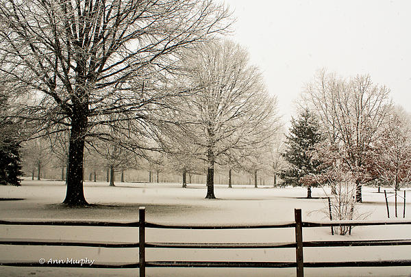 Fog Photograph - Snow-covered Landscape by Ann Murphy