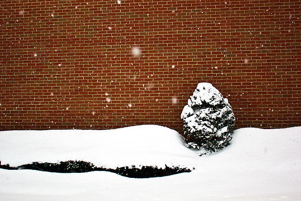 Winter Photograph - Snow Wall by Tim Buisman