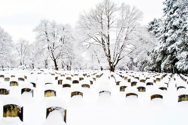 Graveyard Photograph - Snowy Rest by Emily Stauring