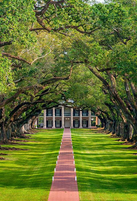 Oak Alley Plantation Photograph - Southern Time Travel by Steve Harrington