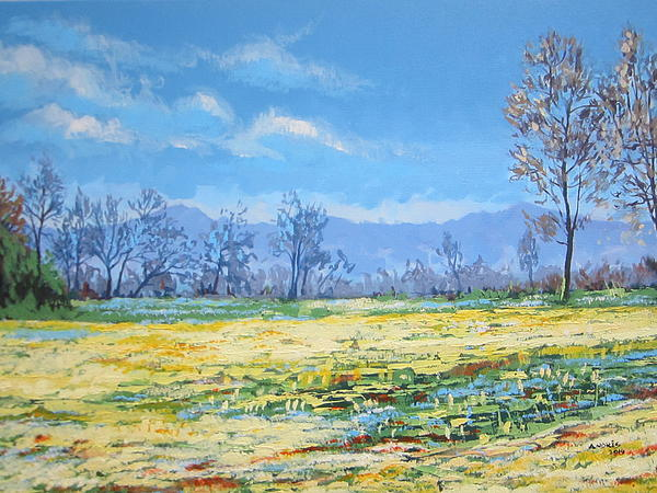 Field In Flower Paintings Painting - Spring by Andrei Attila Mezei