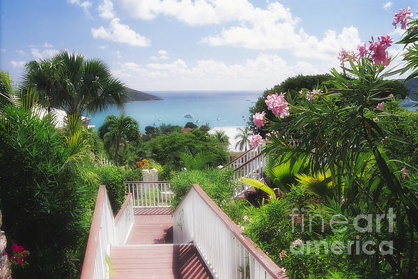 Vista Photograph - Stairs To Paradise by George Oze