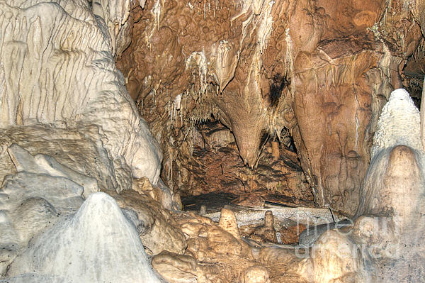 Cave Photograph - Stalactites by Michal Boubin