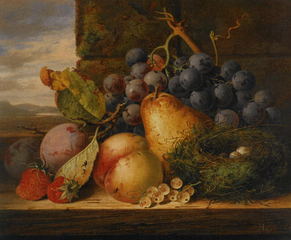 Apples Digital Art - Still Life Grapes Pares Birds Nest by Edward Ladell
