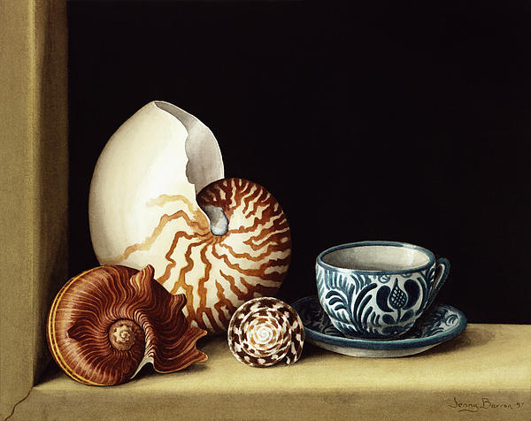 Shell Painting - Still Life With Nautilus by Jenny Barron